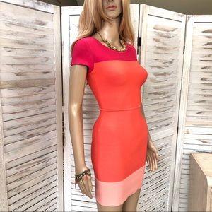BCBGMAXARIA Jacquetta Ambrosia Dress XS